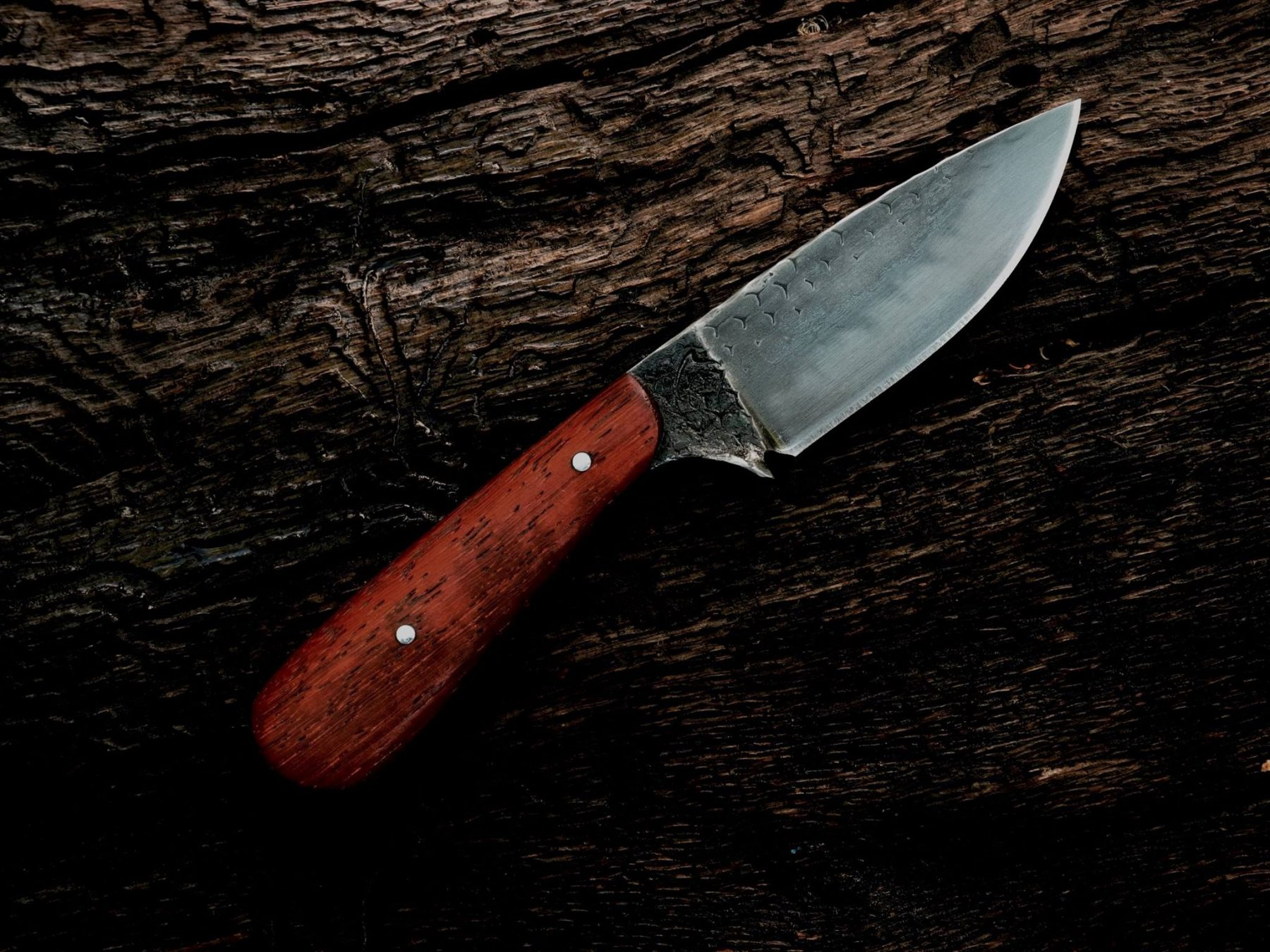 "The ""Pipit"" – Hand Forged Knife 