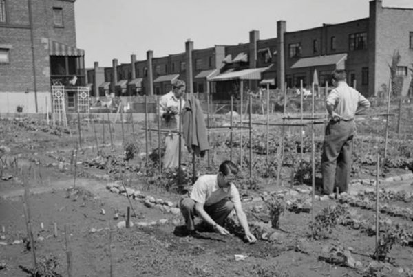 People Planting a Victory Garden